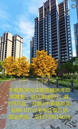 越洲灣總價低,首付9萬起月供兩千多買江景房